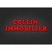 COLLIN IMMOBILIER LUNEVILLE